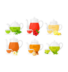 set of different types of tea vector image