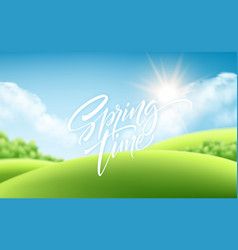 spring time green grass landscape background with vector image