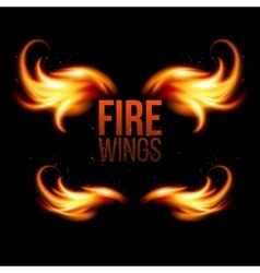Wings in Flame and Fire on black vector