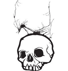 Nightmare Skull vector image