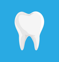single white and healthy tooth isolated on blue vector image
