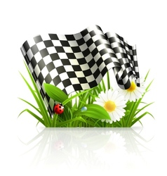 Checkered flag in grass vector image vector image
