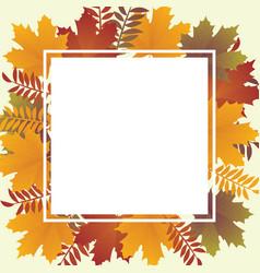 Autumn backround vector