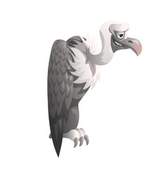 Funny vulture on white background isolated vector