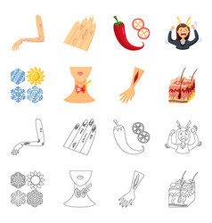 Isolated object of medical and pain icon set vector