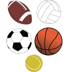 ball collection vector image