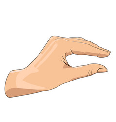 hand showing small size realistic hand gesture vector image vector image