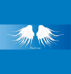 angel wings isolated on the blue background vector image