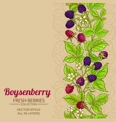 boysenberry branches pattern on color vector image