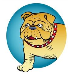 bulldog comic style vector image