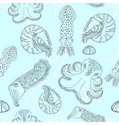 Hand drawn cephalopods seamless pattern vector image