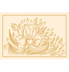 Narcissus spring flower drawing vector