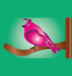 Pink bird sitting on a branch vector