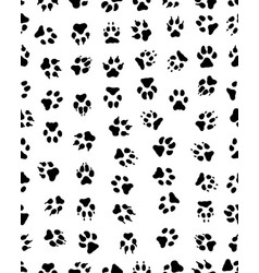 prints of dog paw vector image