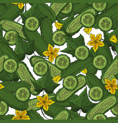 seamless pattern cucumbers in section endless vector image