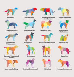 set of colorful mosaic dogs silhouettes vector image