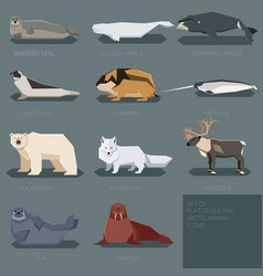 set of flat geometric animals of arctic vector image