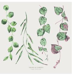 Watercolor tropical green leaves greenery vector