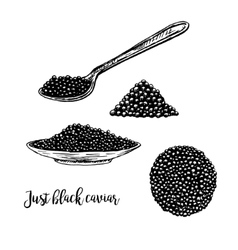 Hand drawn set of plate with black caviar vector image