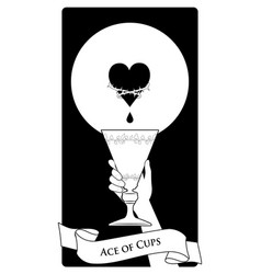 Aces tarot cards cups hand holding a golden vector