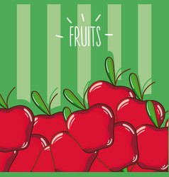 Apples fruits cartoon vector