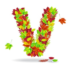 autumn letters with drops of water vector image