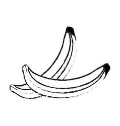 blurred silhouette set banana fruit vector image