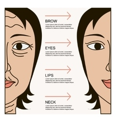 Facial plastic surgery vector