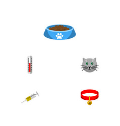 Flat icon animal set of vaccine kitty cat eatin vector