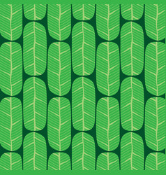 Green banana leaves pattern vector