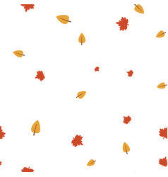 maple and birch leaves pattern seamless vector image