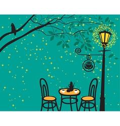 lantern night vector image