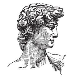david vintage vector image