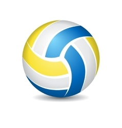 Volleyball isolated on white vector image vector image