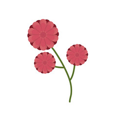 flower branch spring icon vector image vector image