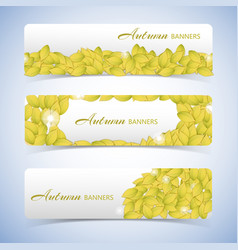 autumn leaves banner set vector image
