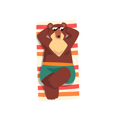 bear in sunglasses sunbathing on the beach cute vector image