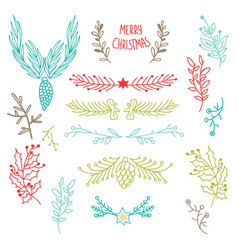 colorful winter holidays botanical template vector image
