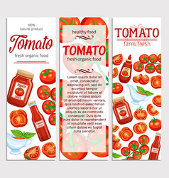 Red tomatoes and sauce vector