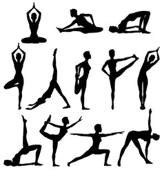Silhouettes of woman practicing yoga vector
