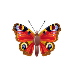 butterfly icon 3d realistic peacock butterfly vector image