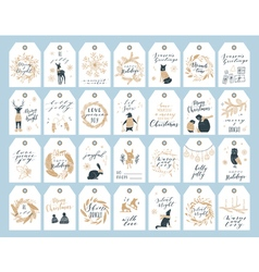 Christmas tag collection vector