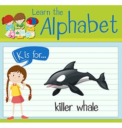 Flashcard letter K is for killer whale vector image