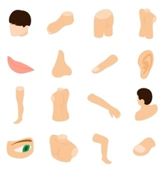 Body parts icons set isometric 3d style vector image