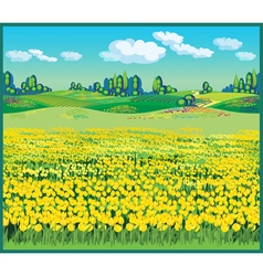 beautiful country landscape with tulips vector image vector image