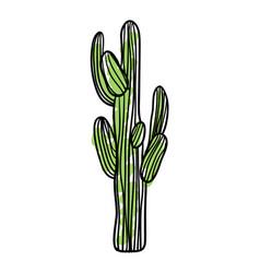 green saguaro cactus hand drawn icon vector image vector image