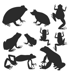 frog silhouette cartoon tropical wildlife vector image