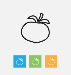 Of food symbol on tomato vector