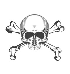 vintage monochrome skull with crossbones isolated vector image