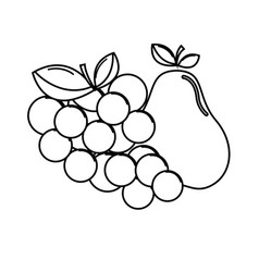 silhouette grape and pear fruits icon vector image vector image